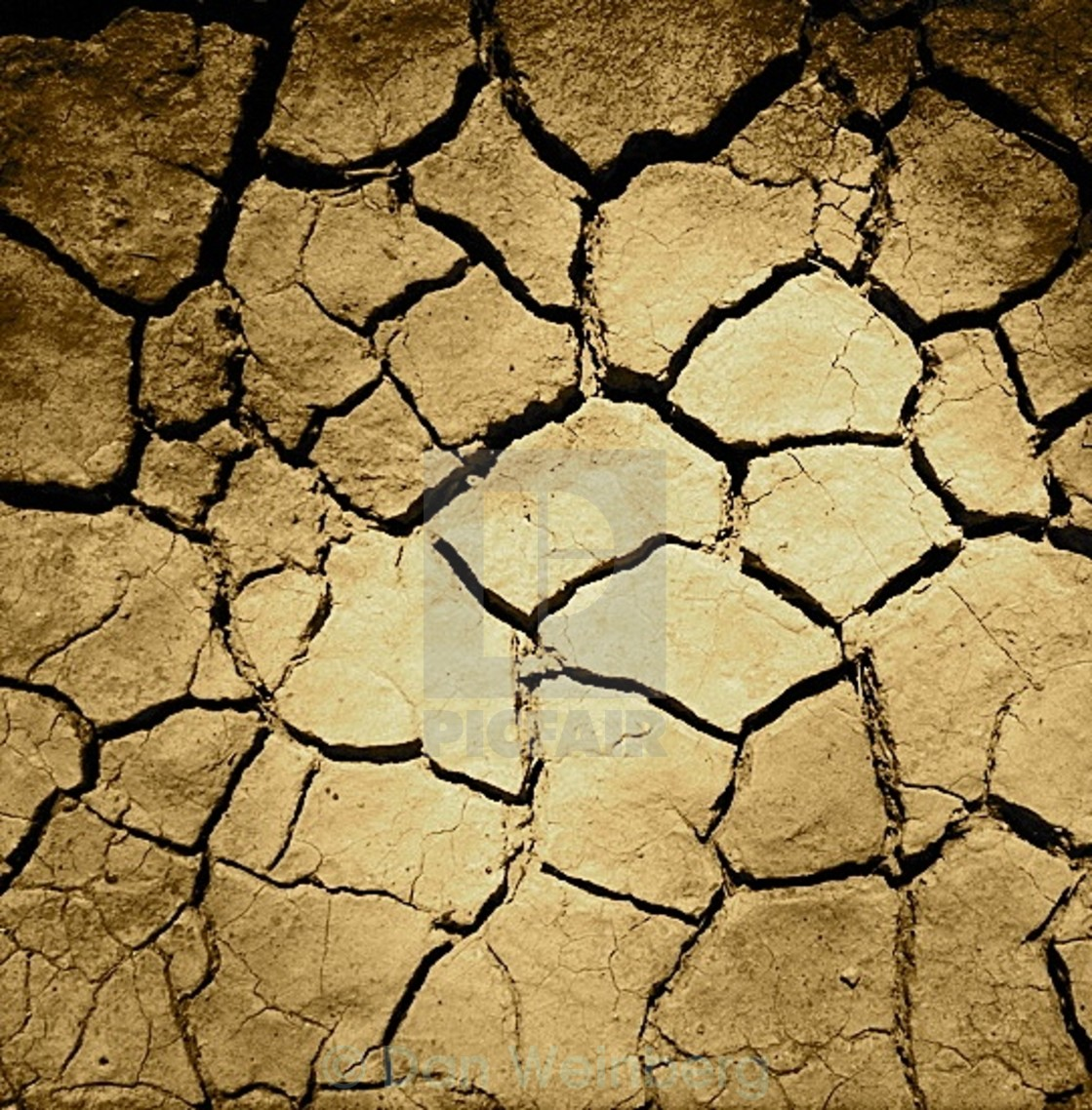 """Cracked Earth"" stock image"