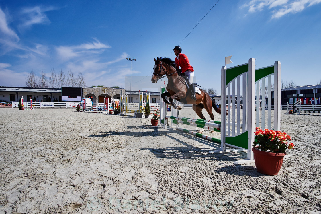 """Show jumping"" stock image"