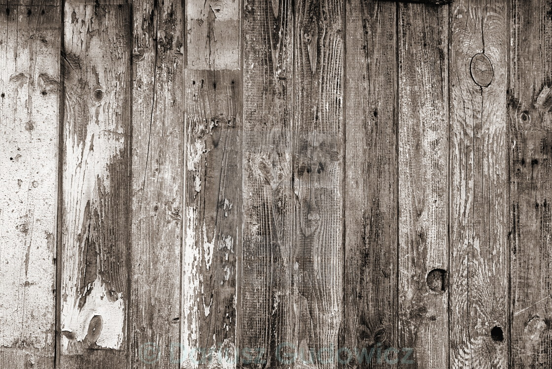 """Old grunge wooden wall texture"" stock image"
