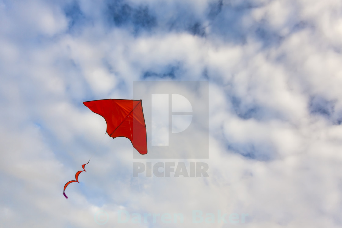 """Red Kite Flying"" stock image"