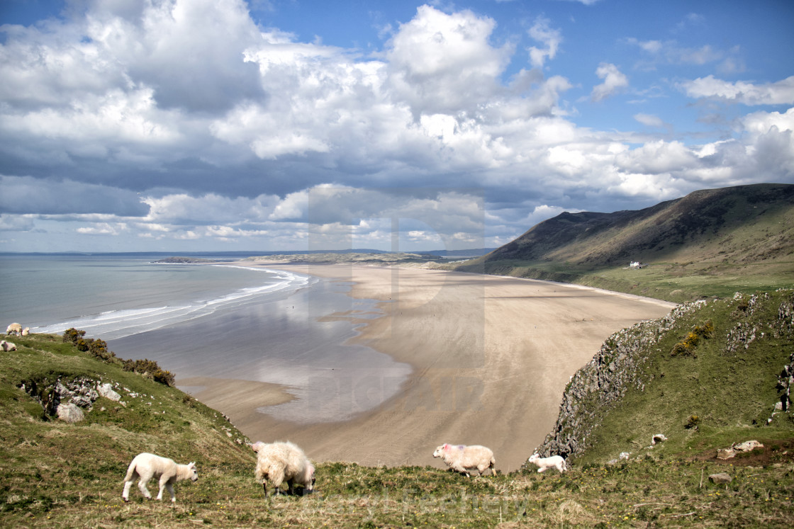 """Rhossili Beach"" stock image"