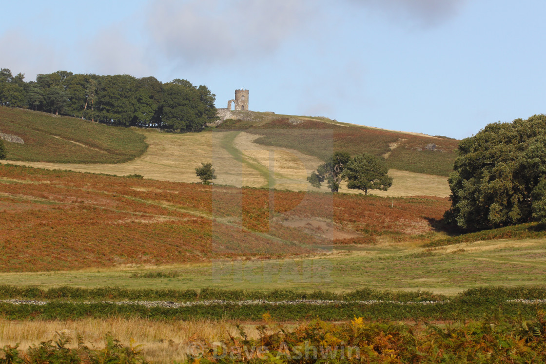 """Old John at Bradgate Park"" stock image"