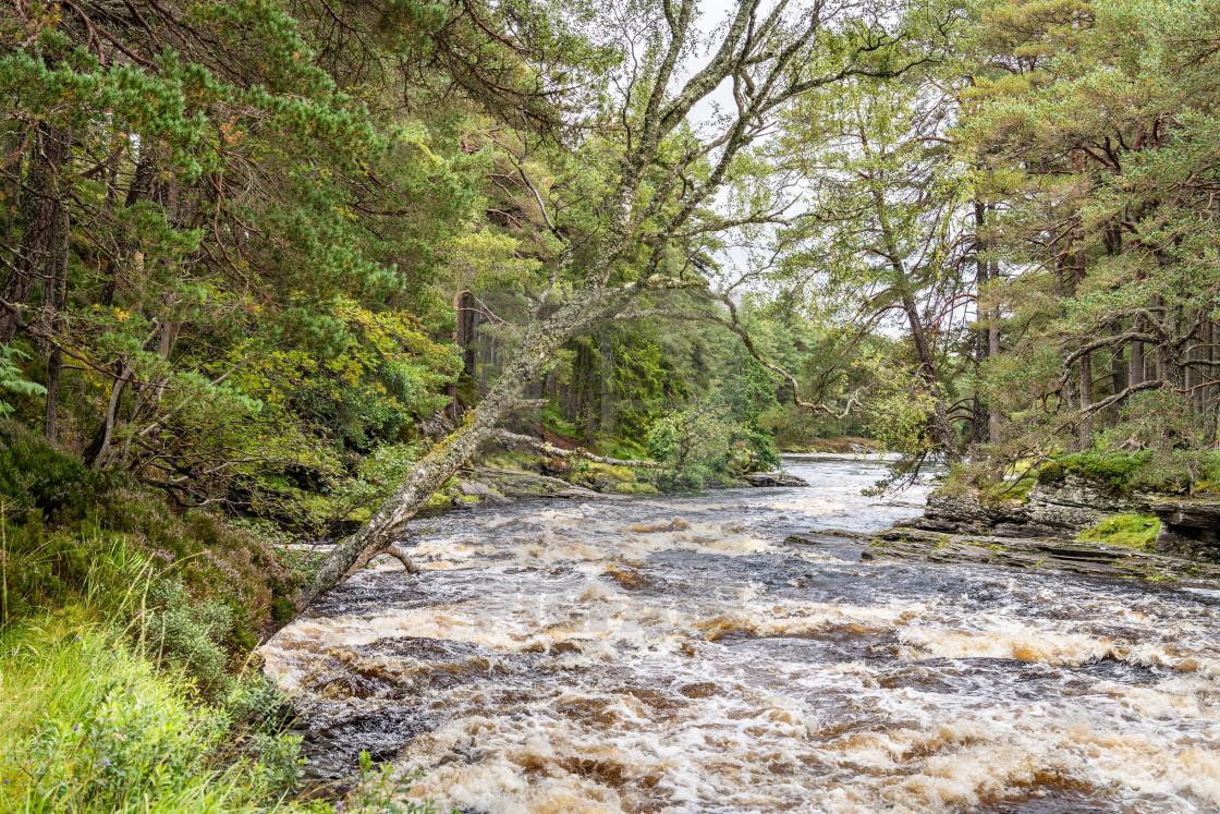 """River Dee, Linn of Dee, Mar Lodge Estate, Aberdeenshire, Scotland"" stock image"