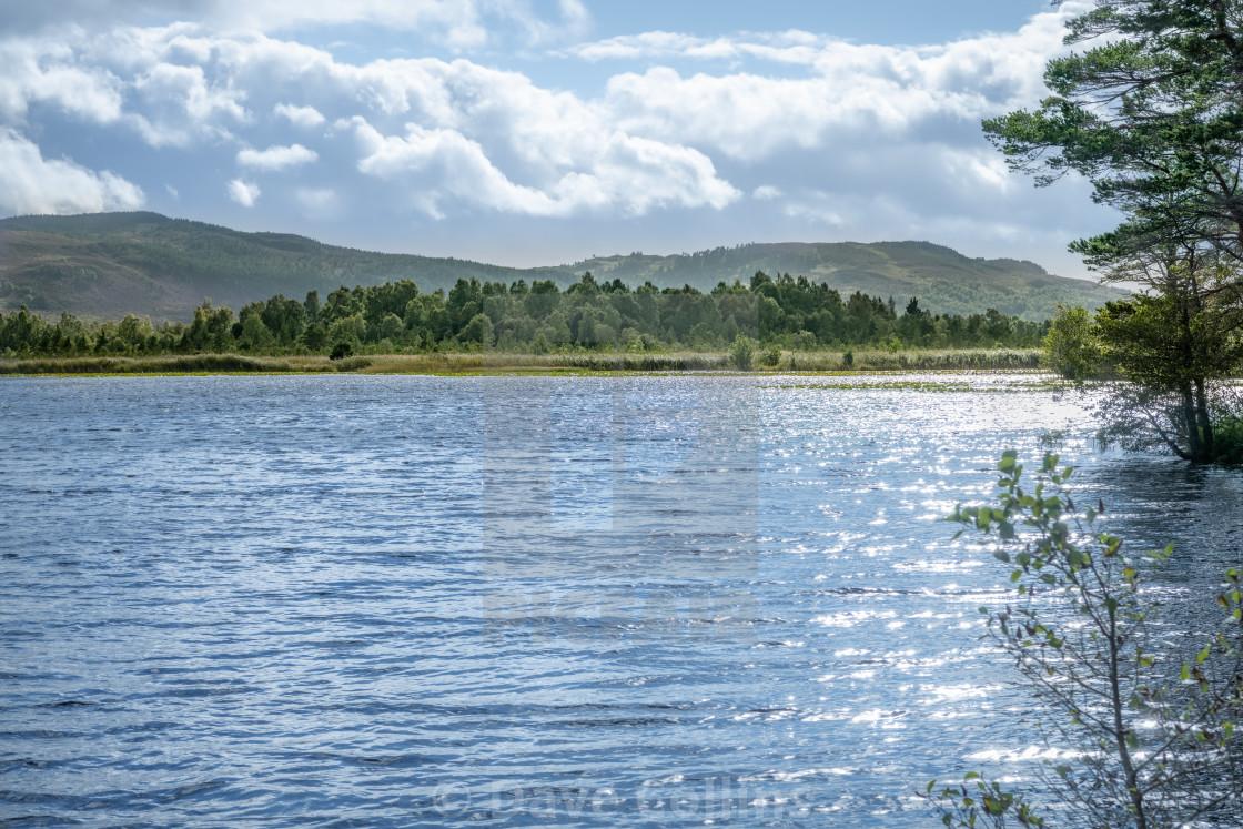 """Loch Garten, Highlands, Scotland"" stock image"