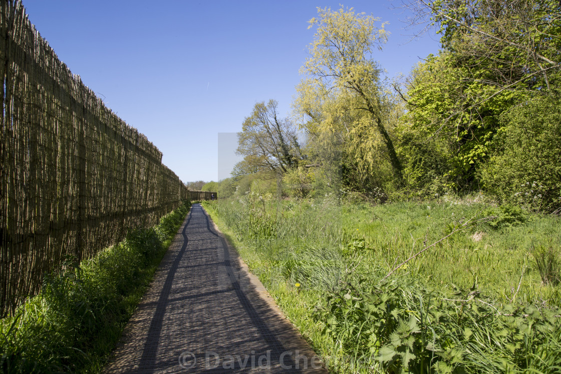 """Train Track Trackway"" stock image"
