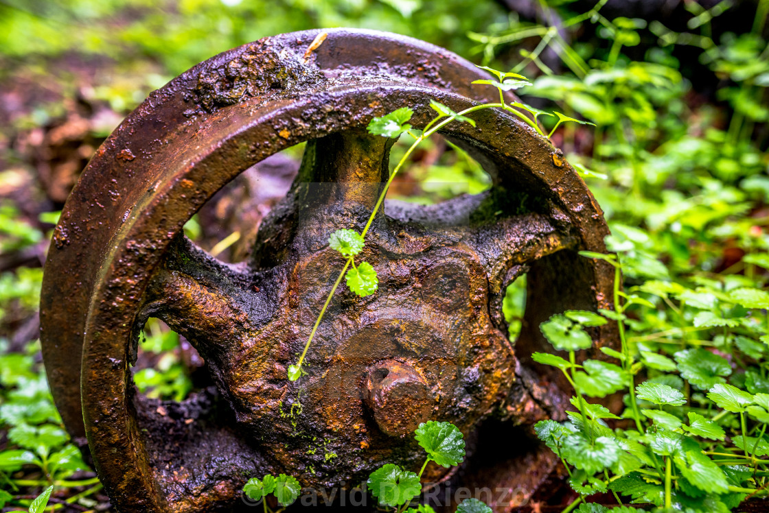 Wheel of Time - License, download or print for £6 20