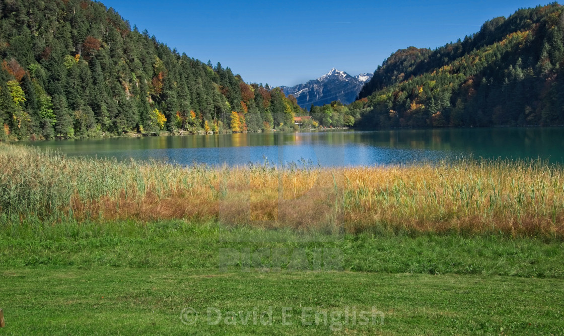 """""""Reflective lake in the Bavarian mountains"""" stock image"""