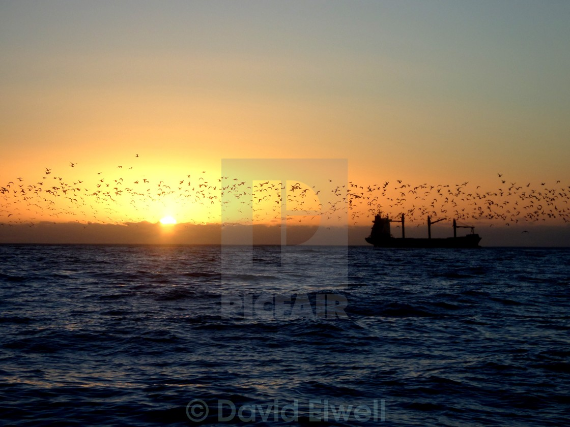 """Sunset off Cape Town"" stock image"