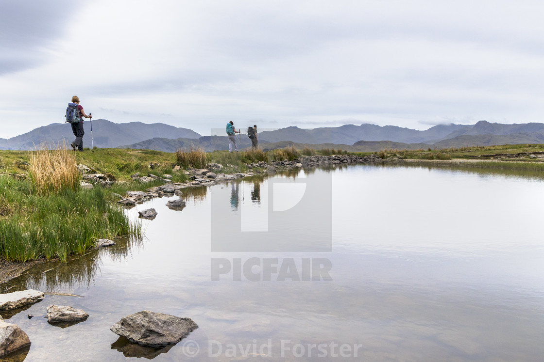 """Walkers Walking Alongside Alcock Tarn, Grasmere, Lake District,"" stock image"