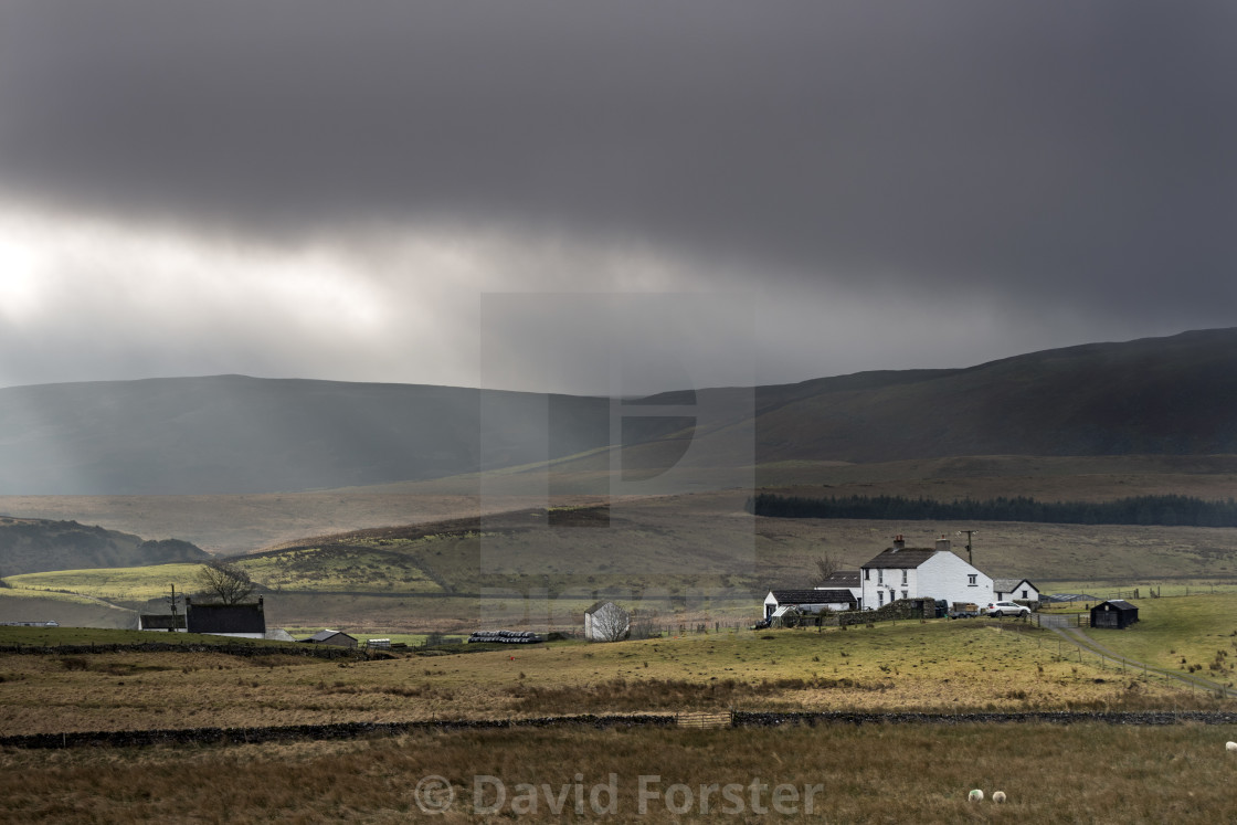 """Cronkley Fell from Hanging Shaw, Forest in Teesdale, UK"" stock image"
