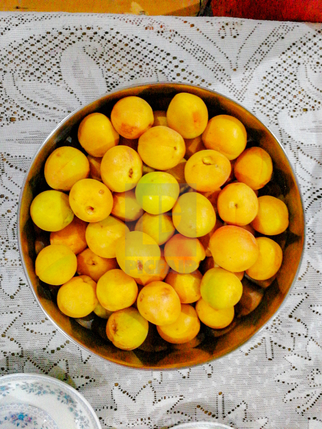 """Apricot Harvest"" stock image"