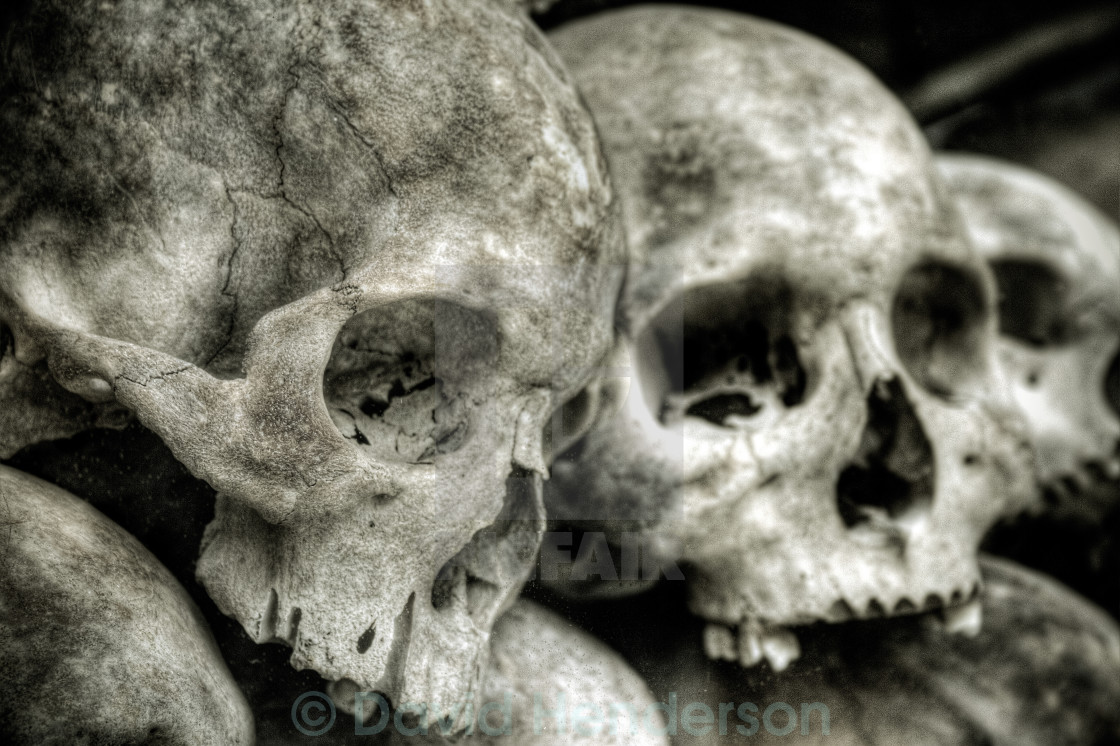 """Skulls"" stock image"