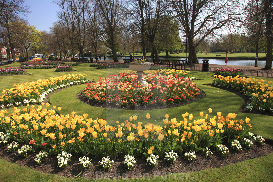 Spring Flowers River Great Ouse Embankment Bedford Town