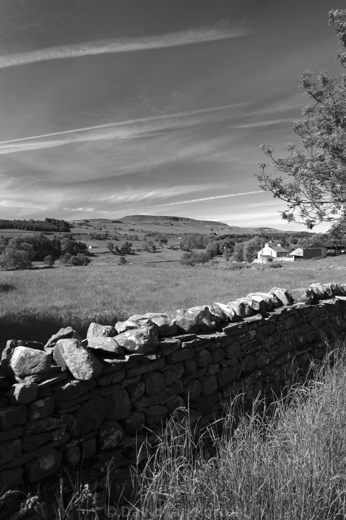 Summer west witton moor overlooking west witton village yorkshire dales
