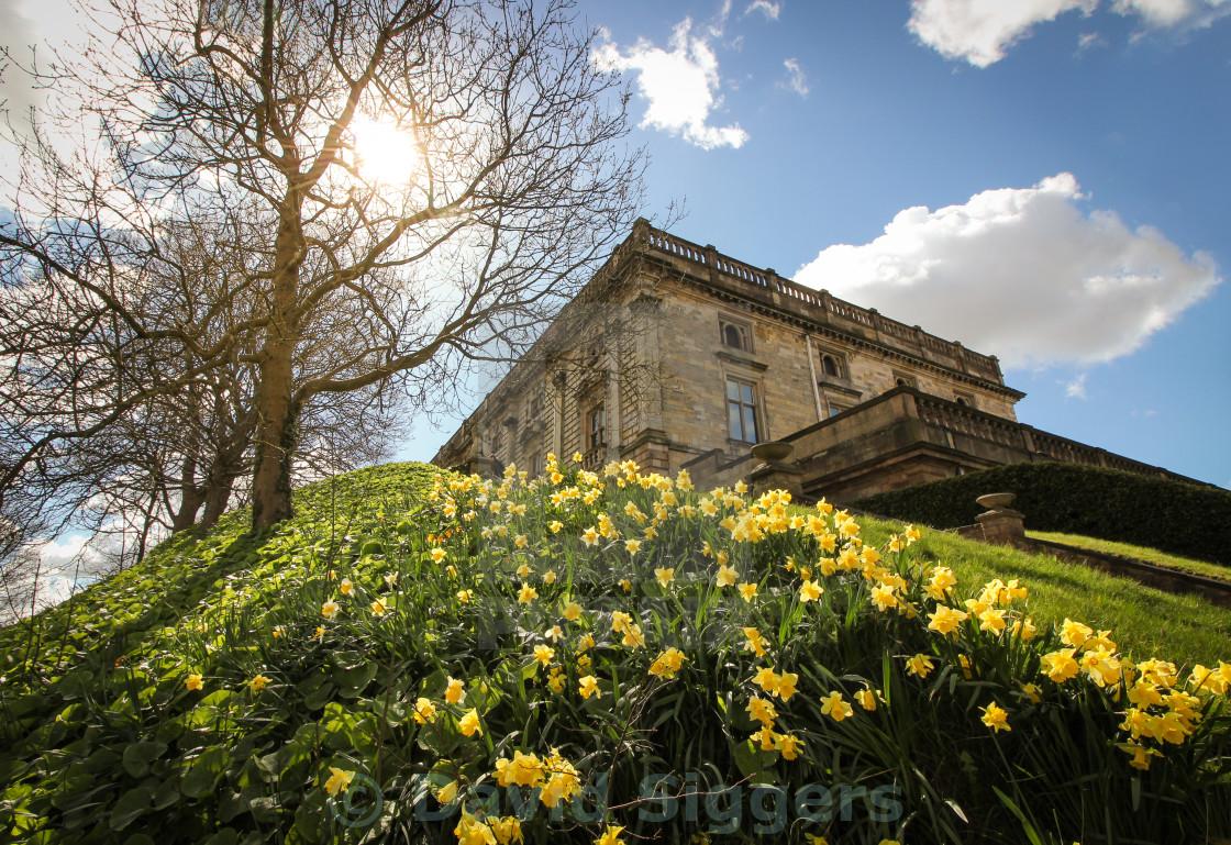 """Nottingham Castle in the Sun"" stock image"