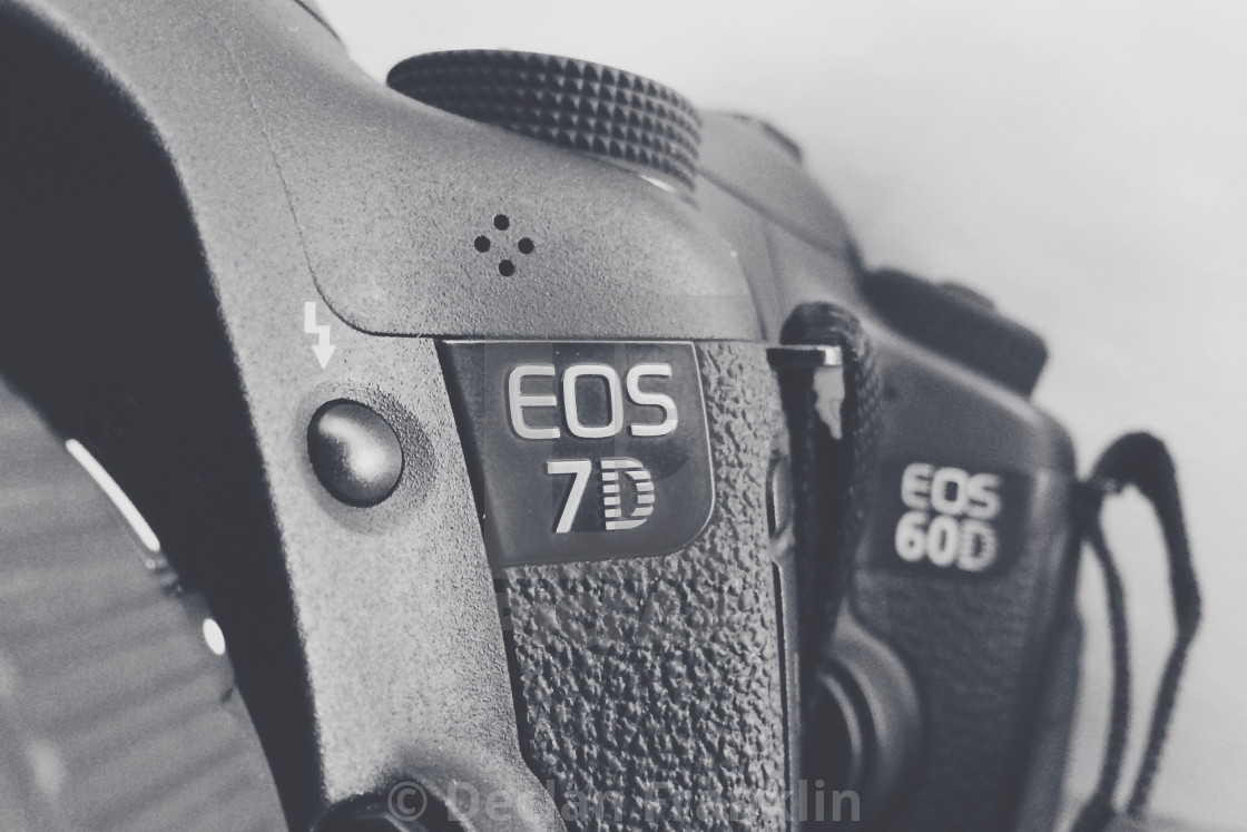 Canon 7d and 60d cameras stock image