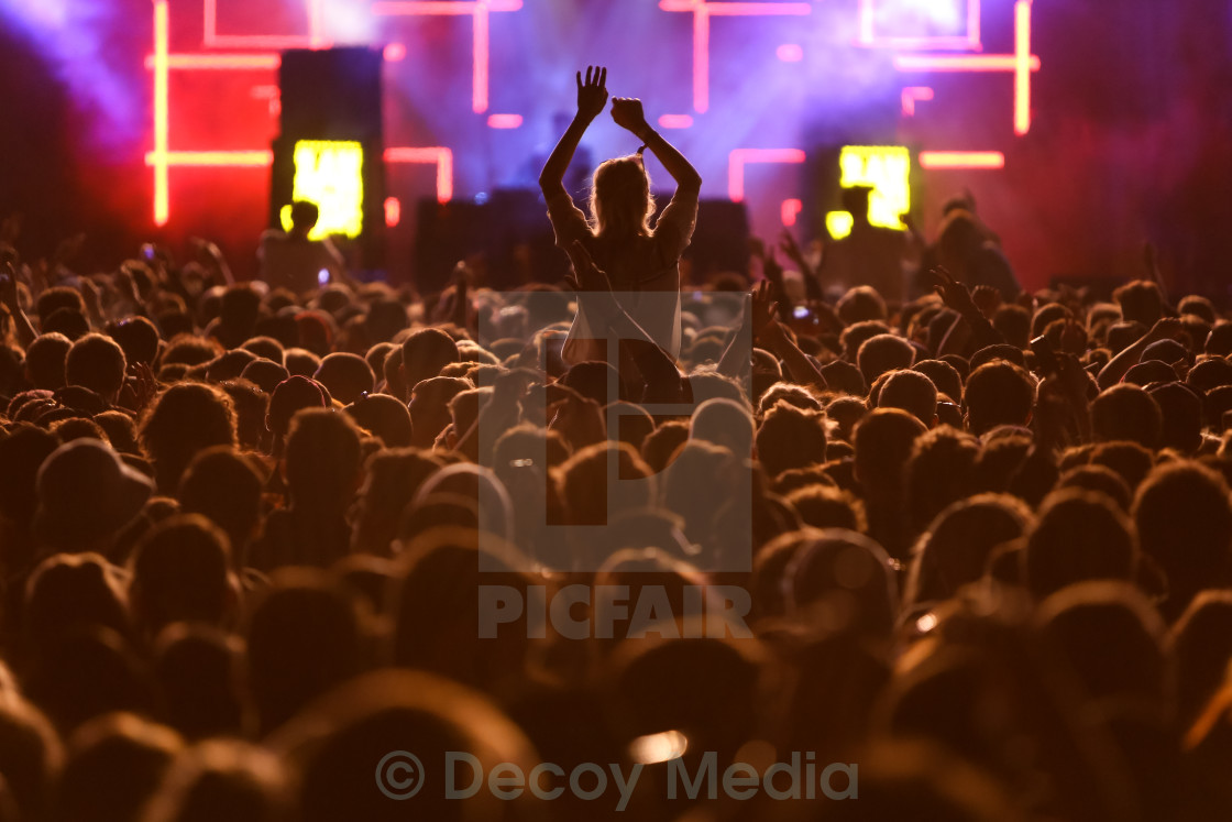 """Festival Crowd 2"" stock image"