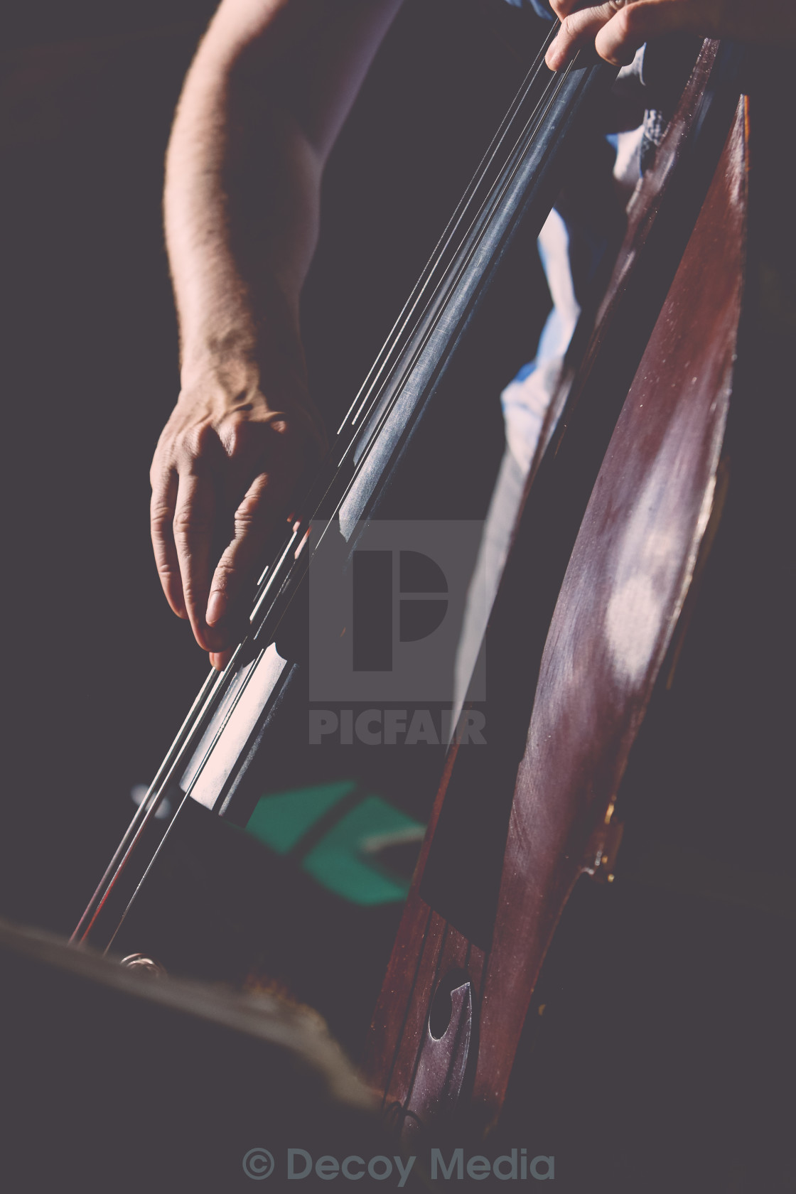 """Double Bass"" stock image"
