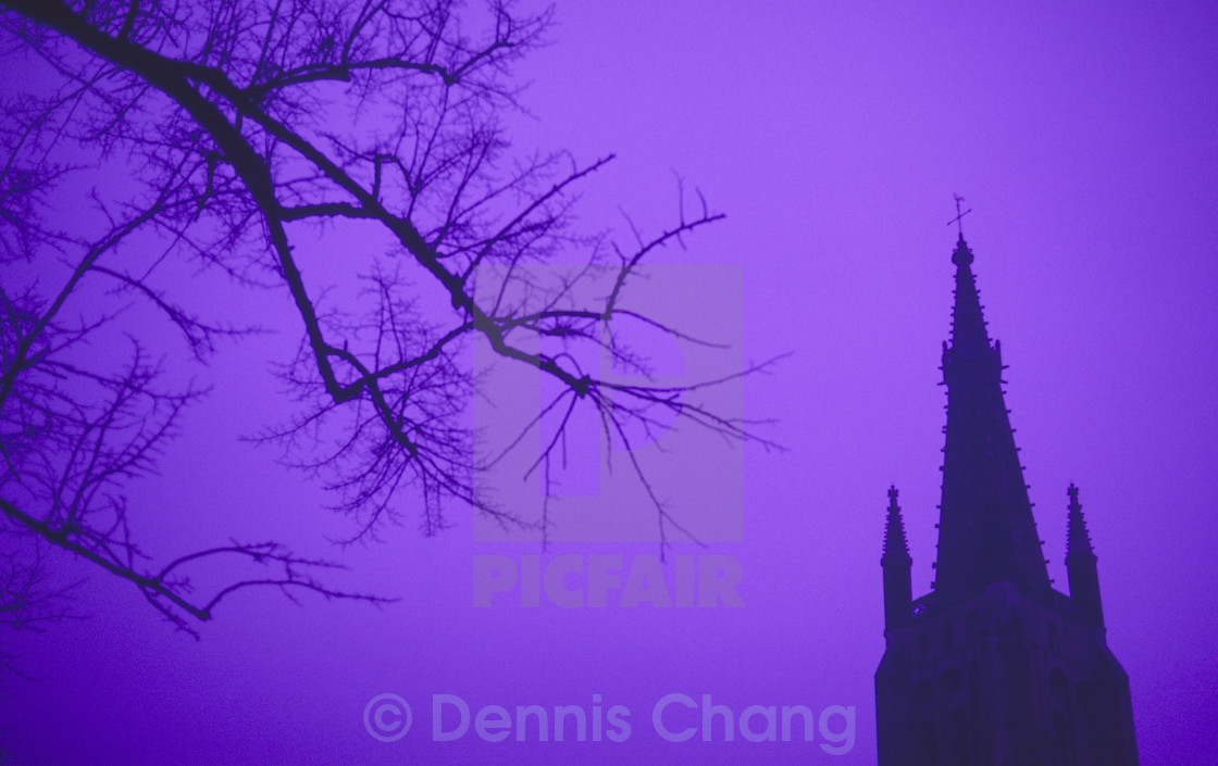"""""""Bleak, sinister and Gothic."""" stock image"""