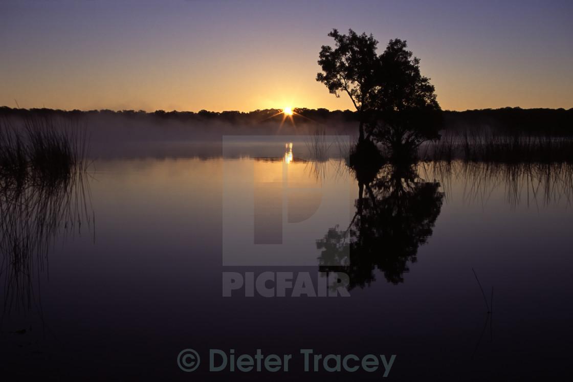 """Sunrise at Lake Boomanjin, Fraser Island"" stock image"