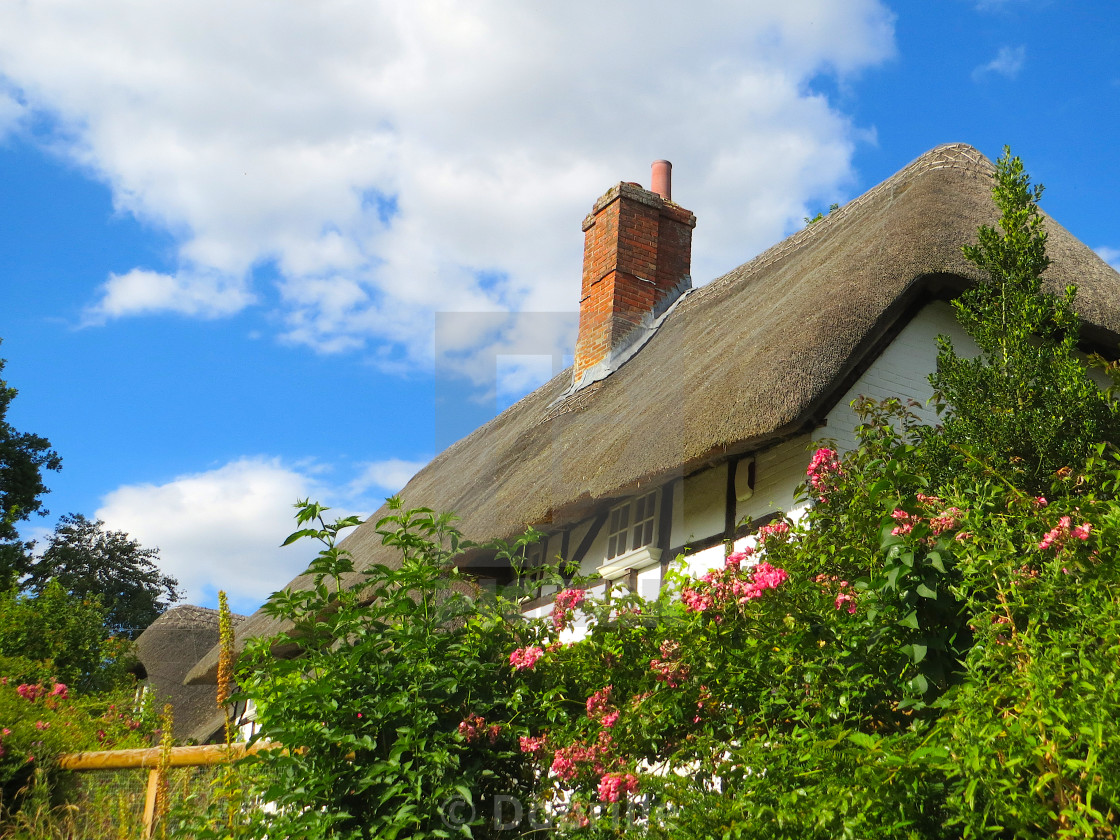 """Thatched cottage in England"" stock image"