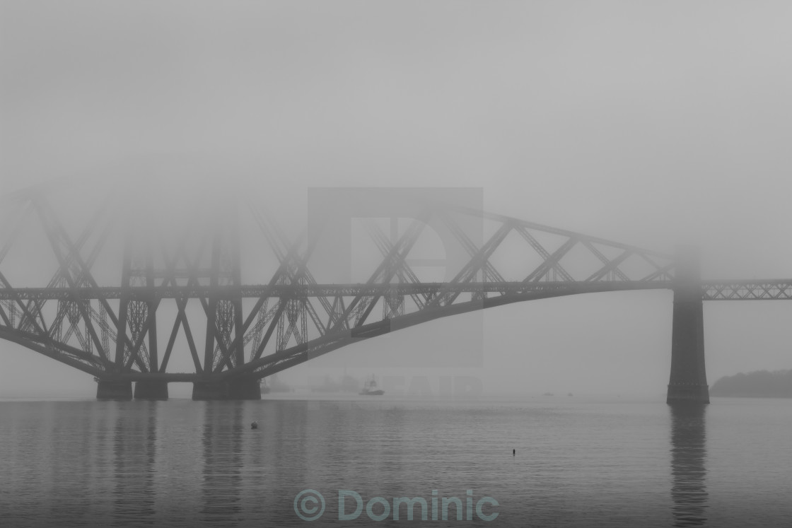 """""""Misty Forth"""" stock image"""