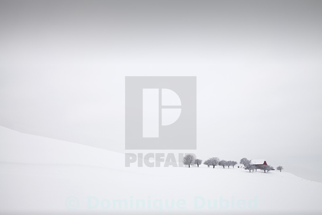"""Winter Solitude"" stock image"