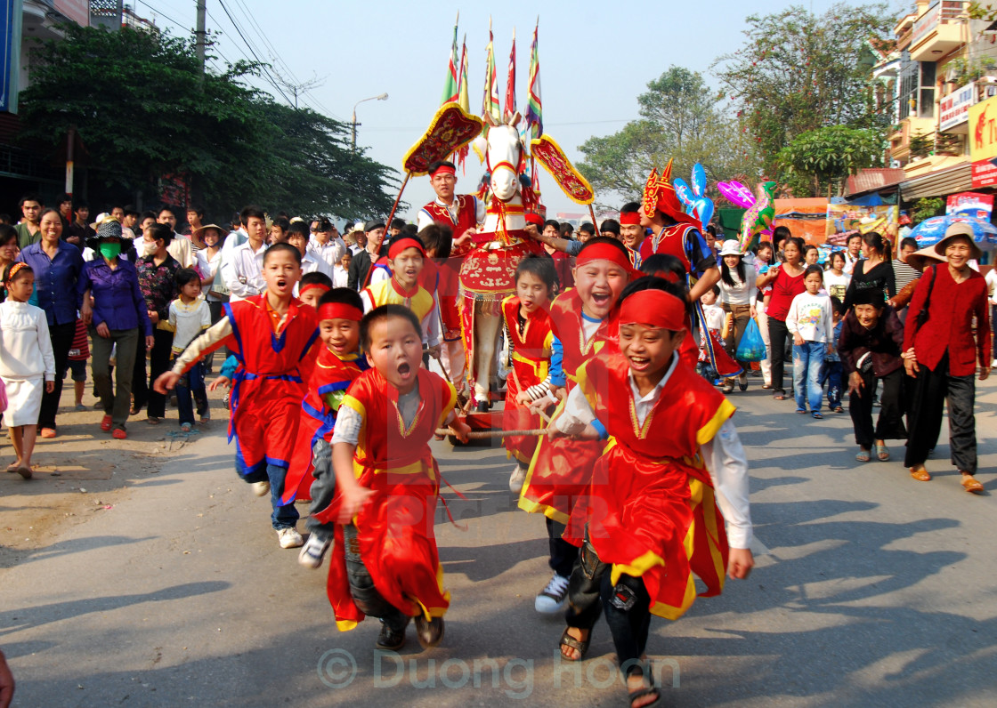 """""""Pull horse to the Lim festival"""" stock image"""