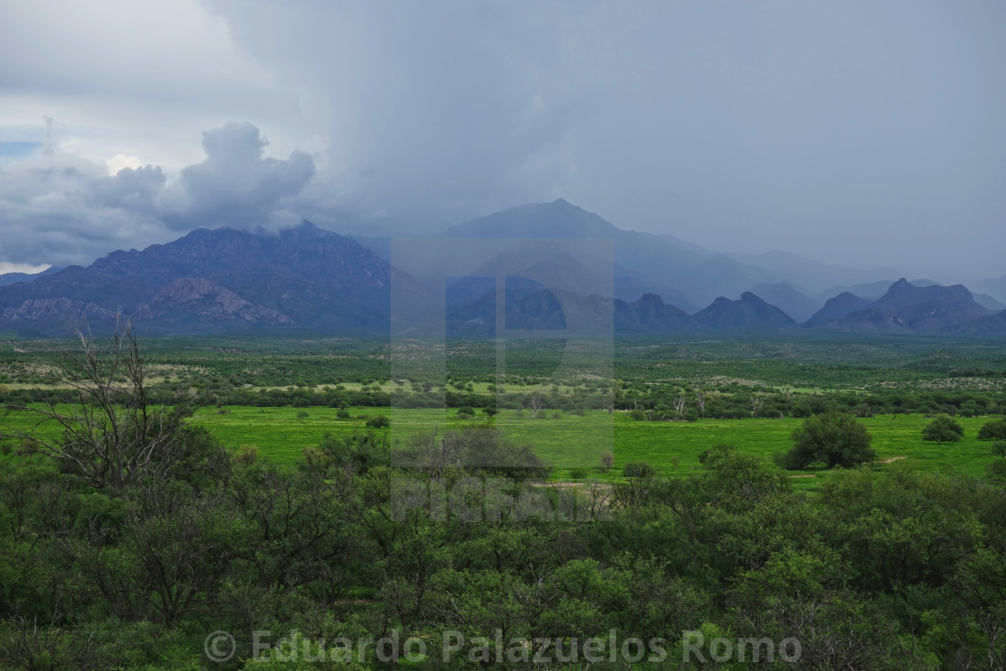 """""""Early Morning Monsoon"""" stock image"""