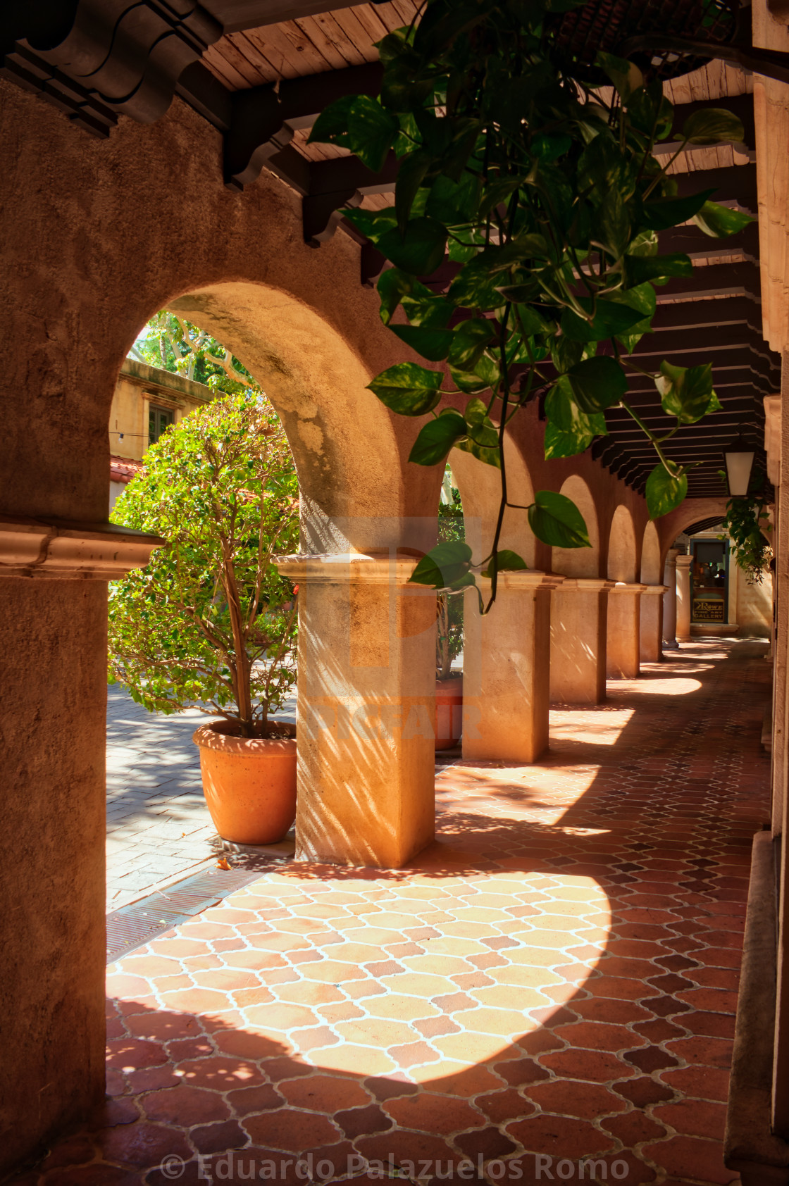 """""""Arches Walkway"""" stock image"""