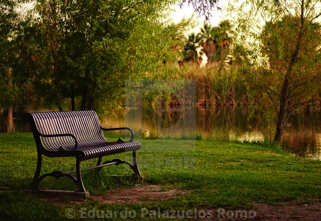 """""""A Welcoming Park Bench"""" stock image"""