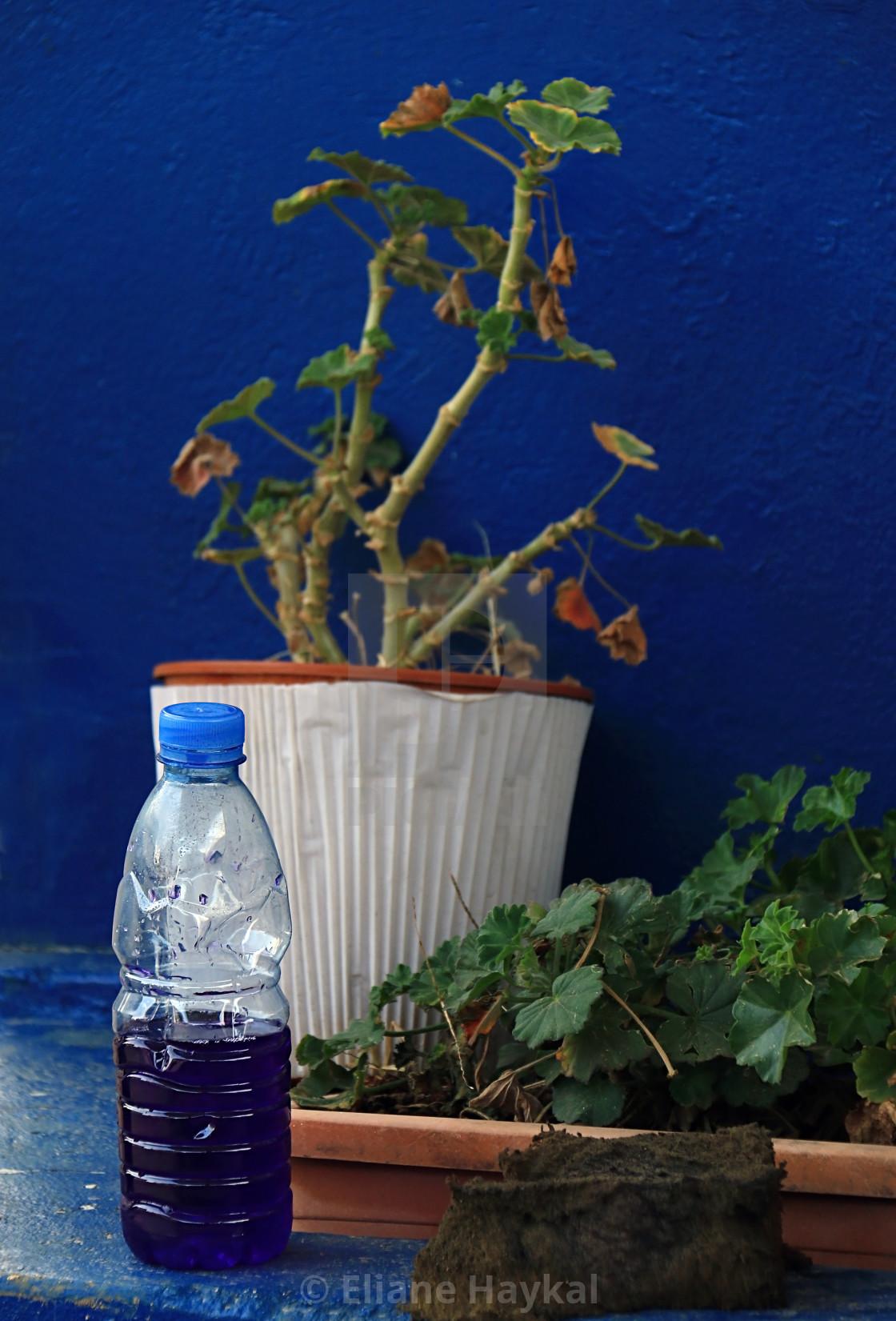 """Gasoline in Plastic Bottle"" stock image"