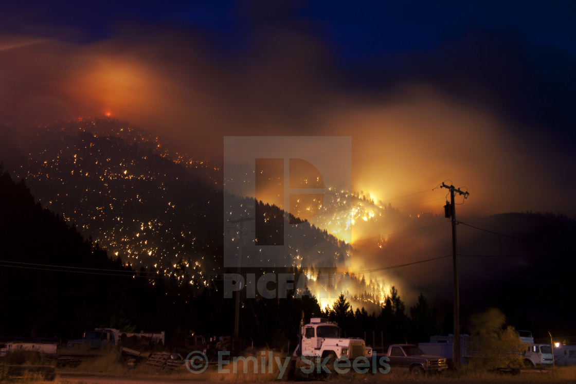 """Wild fire"" stock image"