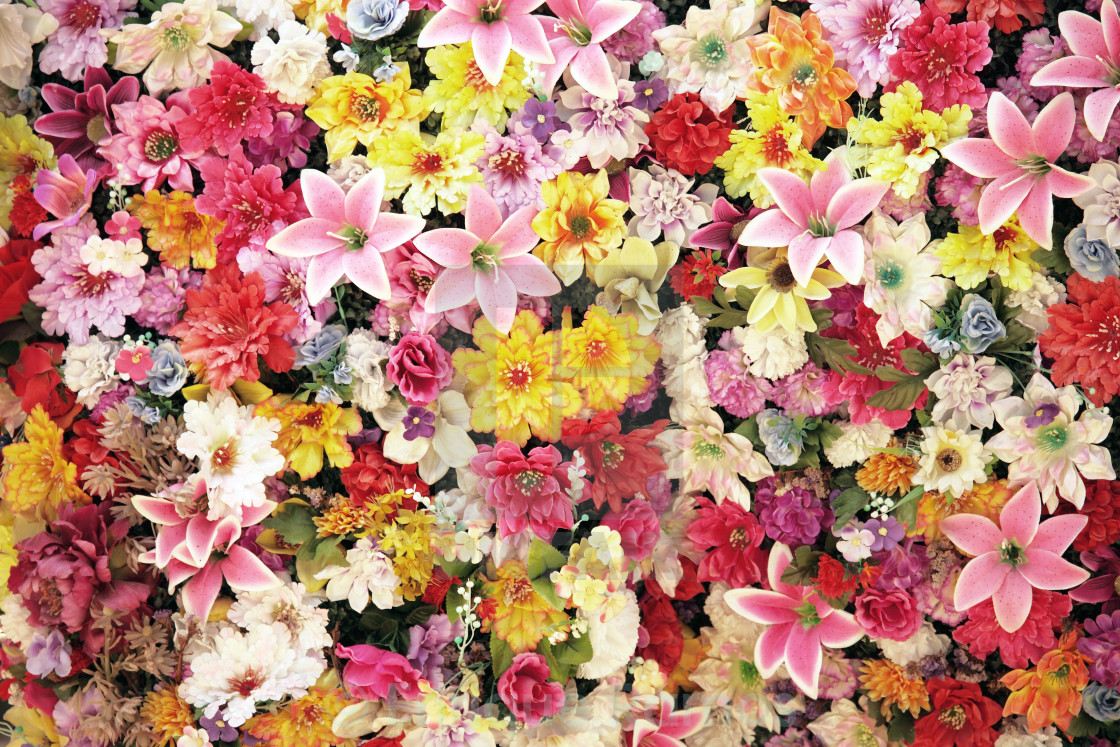 """lot of flowers"" stock image"