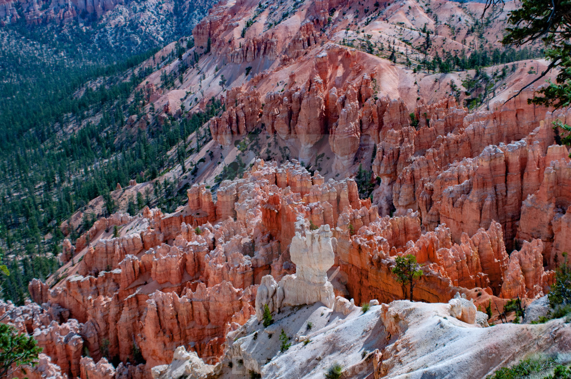 Amphitheater from Inspiration Point at dawn, Bryce Canyon National Park, Utah, United States of America.