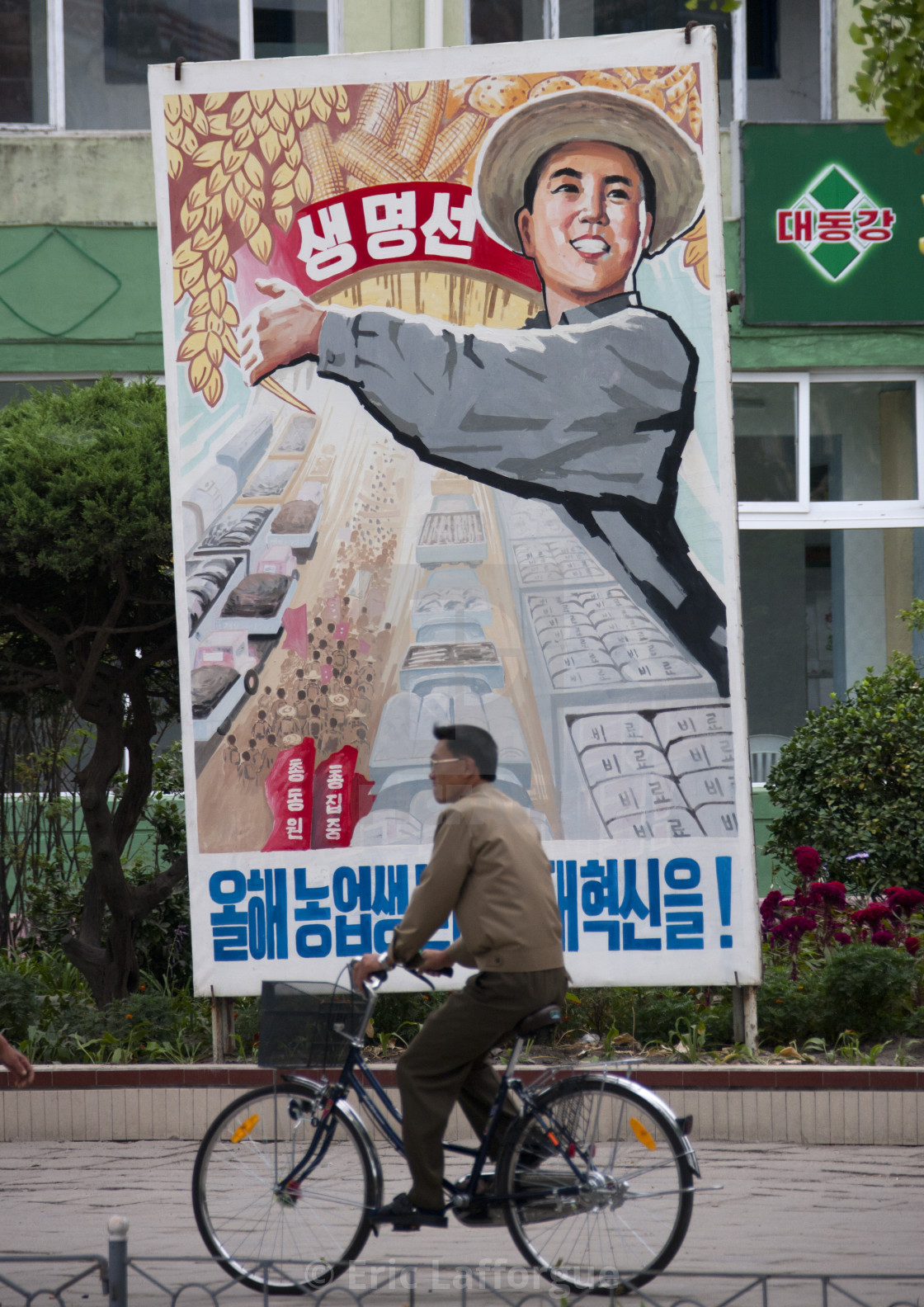 """North Korean man riding a bicycle in front of a propaganda billboard..."" stock image"