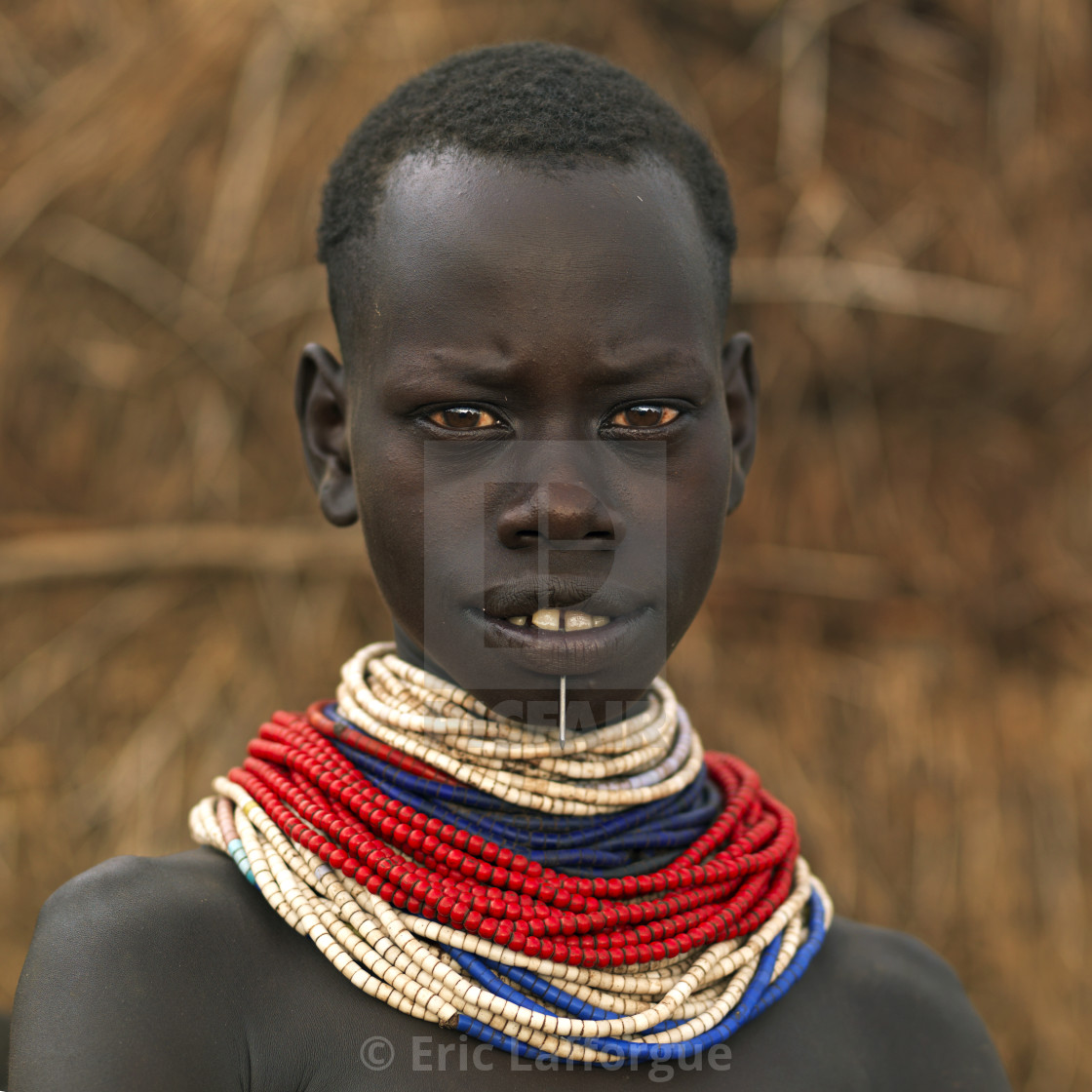 Portrait Of A Karo Tribe Girl With Traditional Necklaces, Korcho