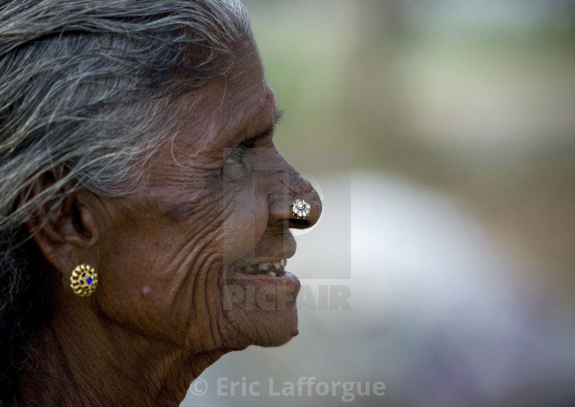 Side View Of An Old Indian Woman With Earrings And Nose Piercing And
