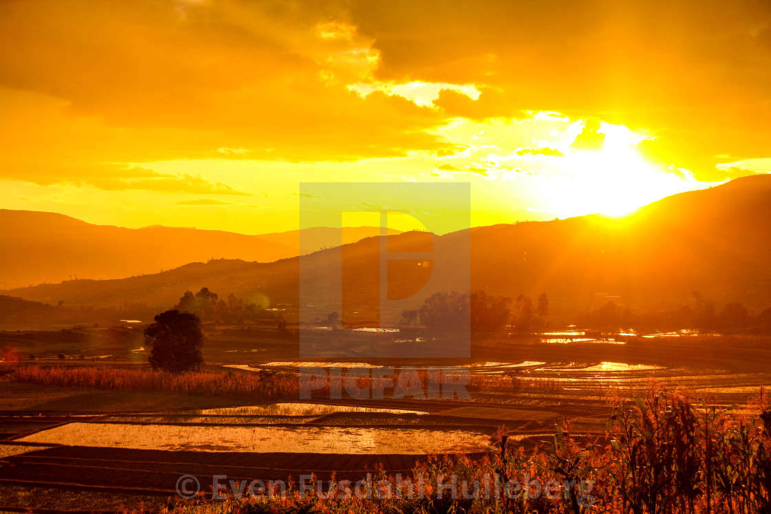 """Sunset over the rice terraces near Antsirabe, Madagascar"" stock image"