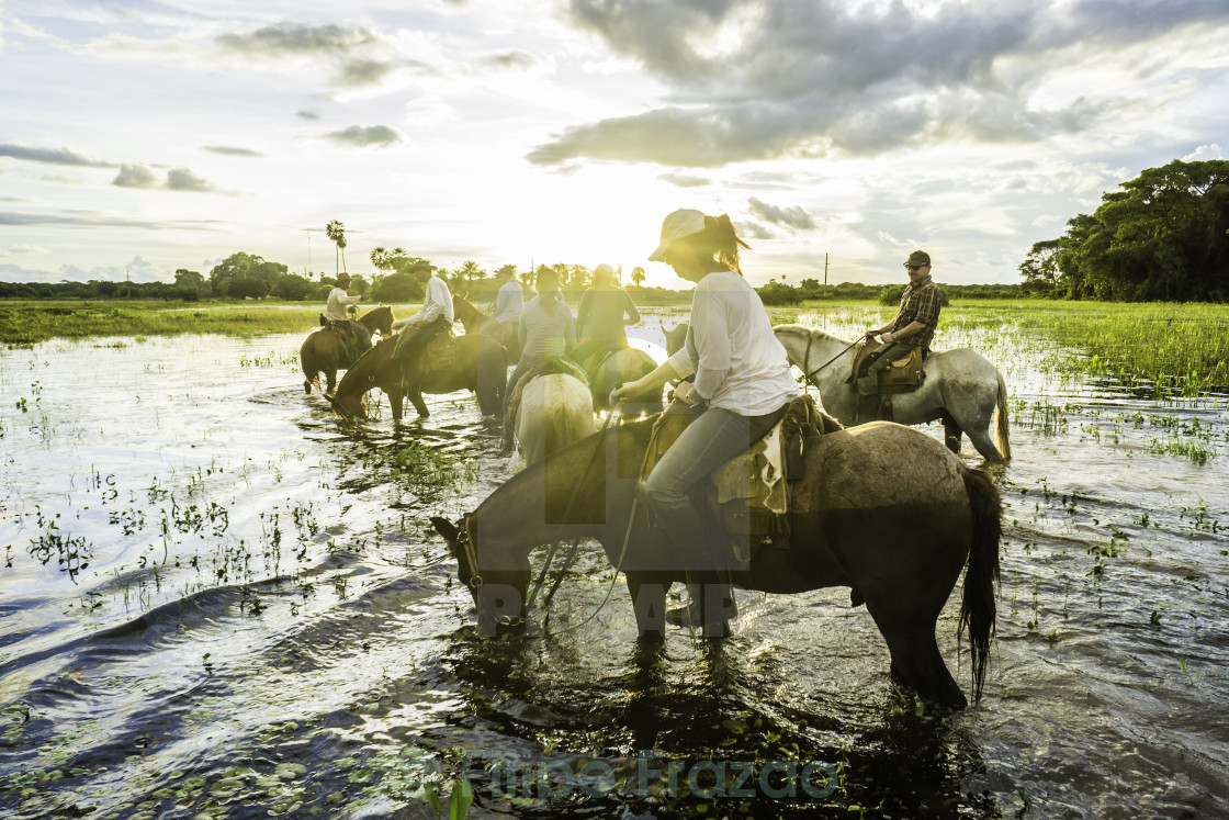 """People ride horses in the Pantanal"" stock image"