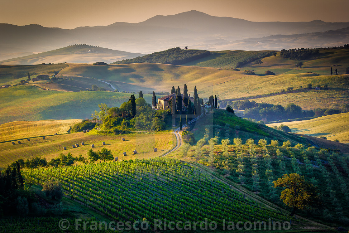 """The Tuscan Landscape"" stock image"