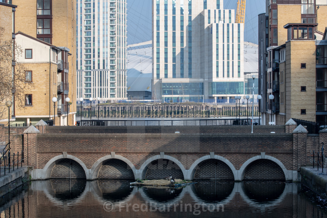 """""""Canada Geese nesting in arches at Canary Wharf"""" stock image"""