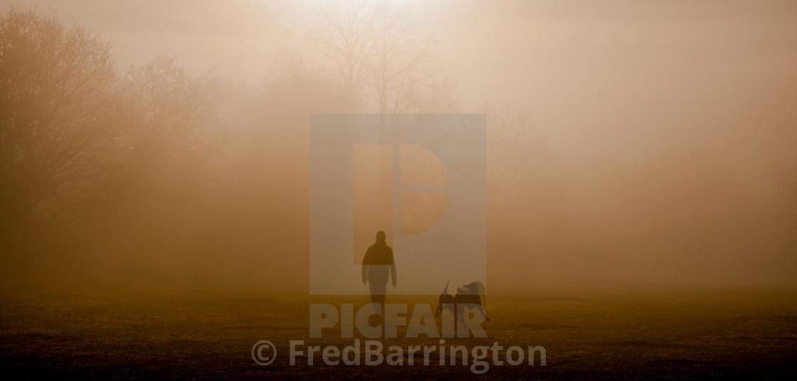 """Dog Walker in the mist"" stock image"