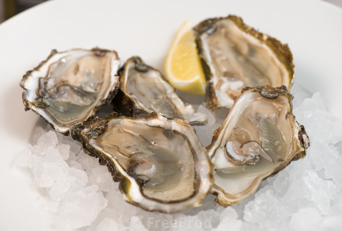 """Fresh open and closed oysters with lemon isolated on white"" stock image"