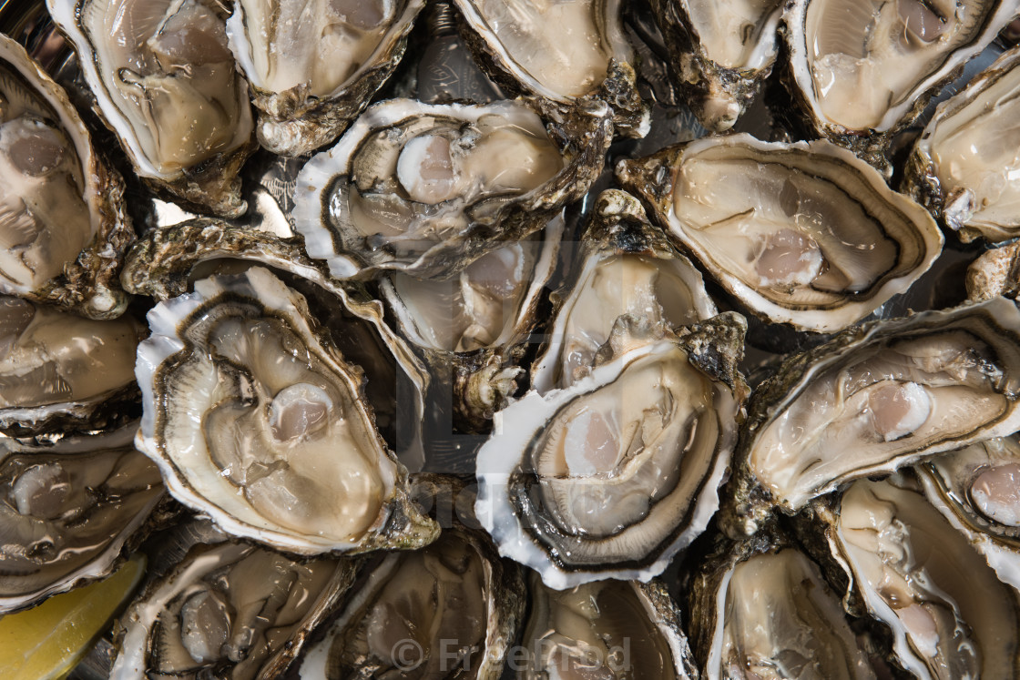 """""""fresh oysters dishing up with lemon on the table"""" stock image"""