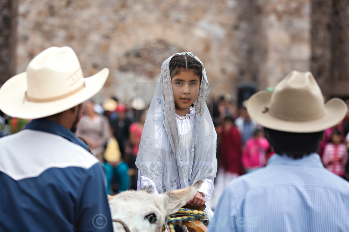 """A young mexican girl sits on a donkey at a religious christmas offering in a small village in mexico"" stock image"