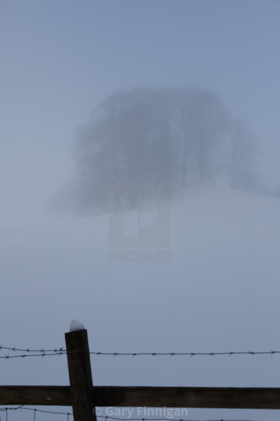 """Misty Day Series - 14 of 23"" stock image"