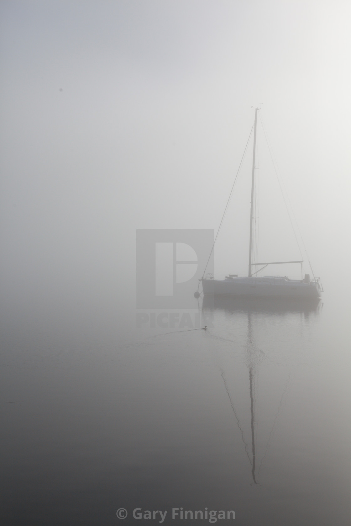 """""""Misty Day Series - 23 of 23"""" stock image"""