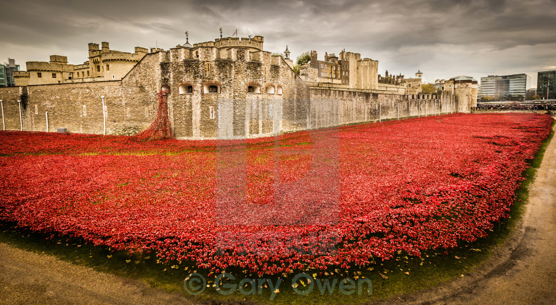 """We Will Remember Them"" stock image"