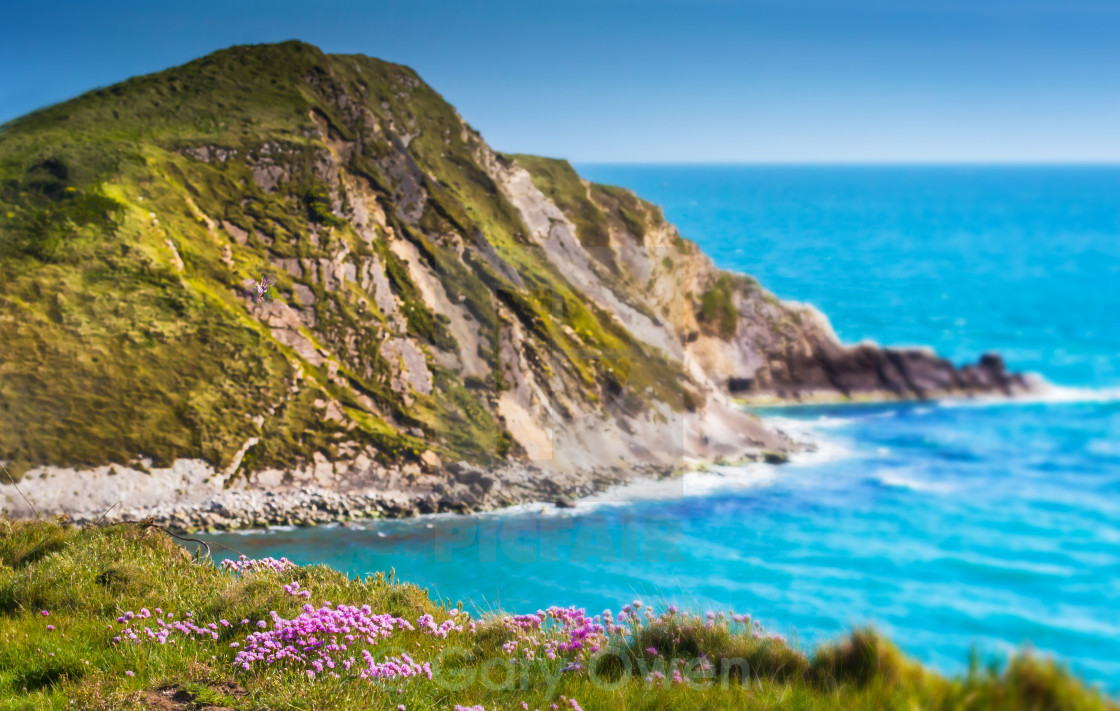 """Flora Cliff Top"" stock image"